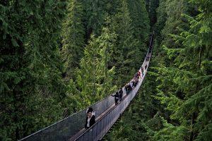 Capilano Suspension Bridge Park (Vancouver)