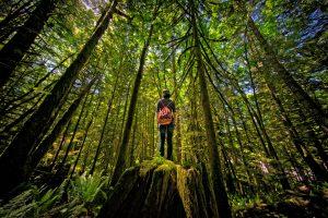 Alice Lake Provincial Park, Squamish (British Columbia)