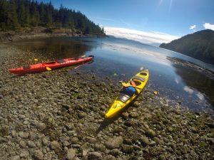 Kayaking in Telegraph Cove