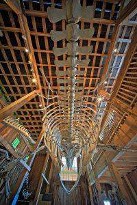Whale Interpretive Centre