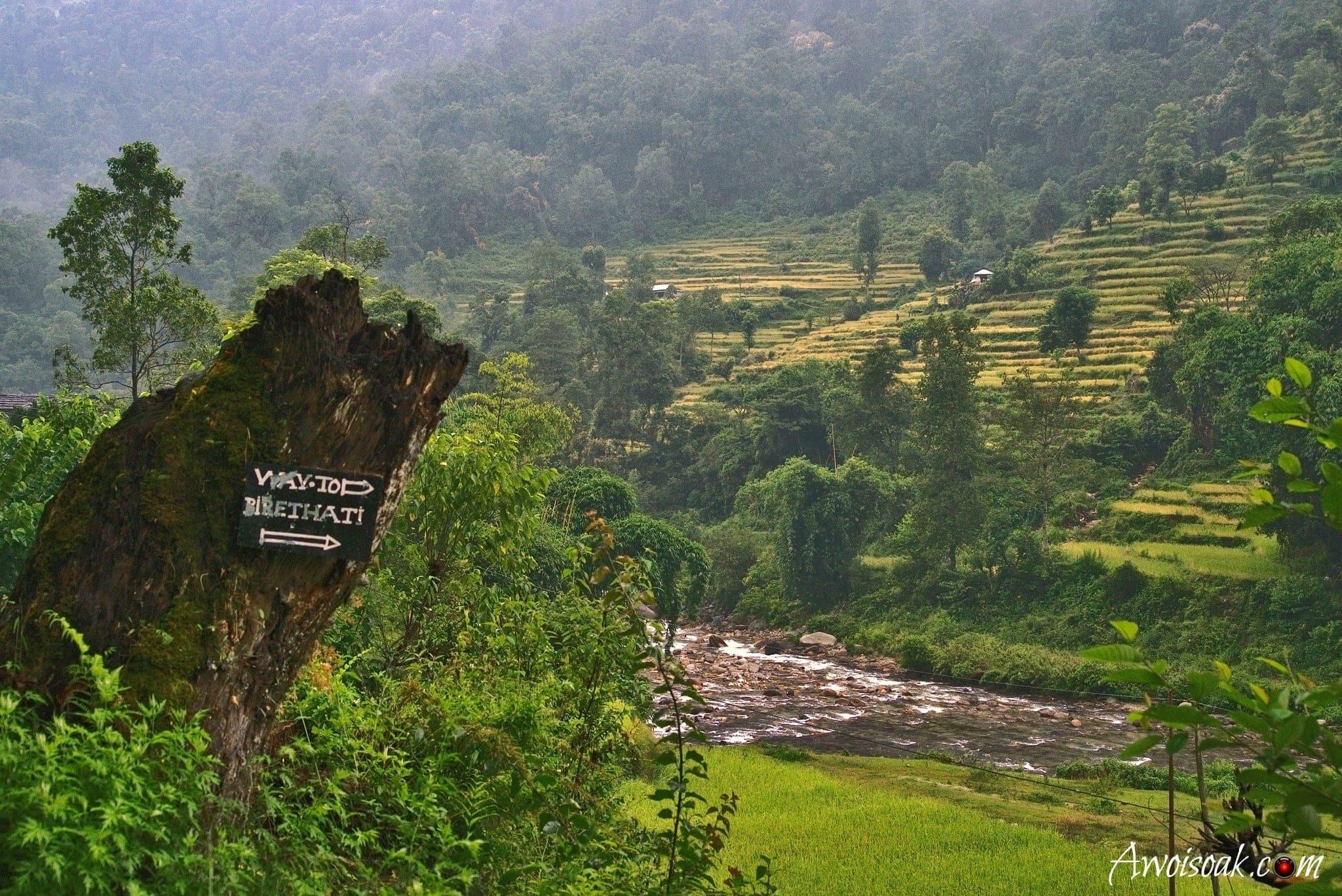Ghorepani Poon Hill Trek | AwOiSoAk