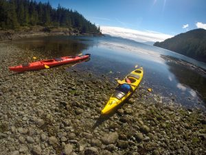 Kayaking in Telegraph Cove